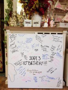 Scape 10th anniversary canvas